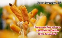 PROGRAMA TROCA-TROCA DE SEMENTES DE MILHO SAFRA 2019/2020