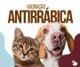 DONA FRANCISCA INICIA CAMPANHA DE VACINAÇÃO CONTRA RAIVA ANIMAL, NO DIA 21 DE AGOSTO DE 2021