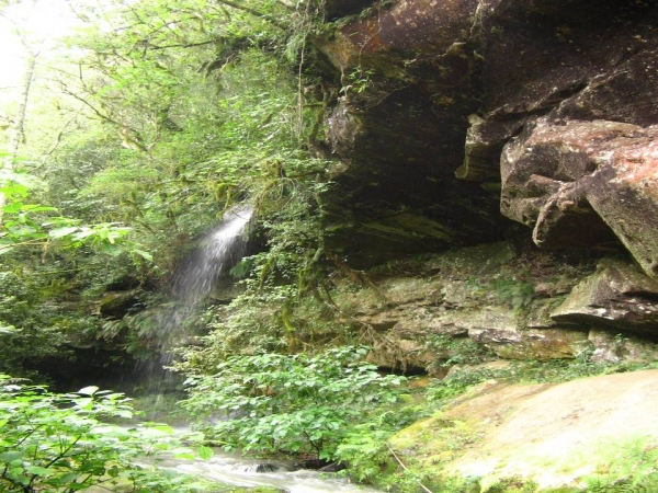 Caverna do Morcego